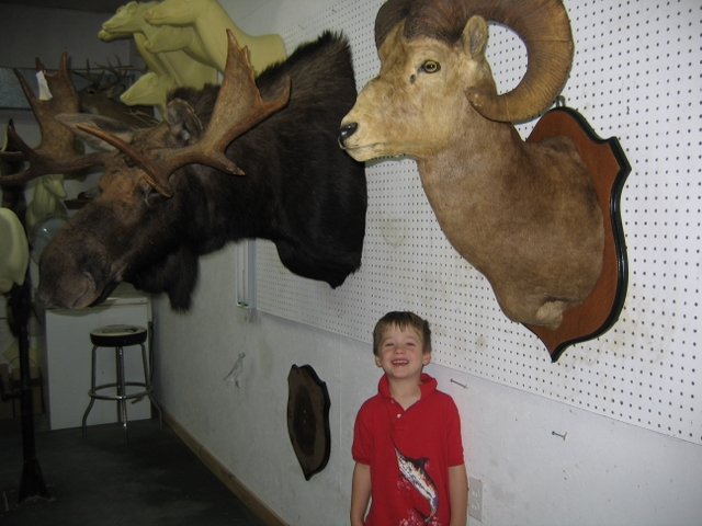 Wildwood Taxidermy in Charlotte, Vermont