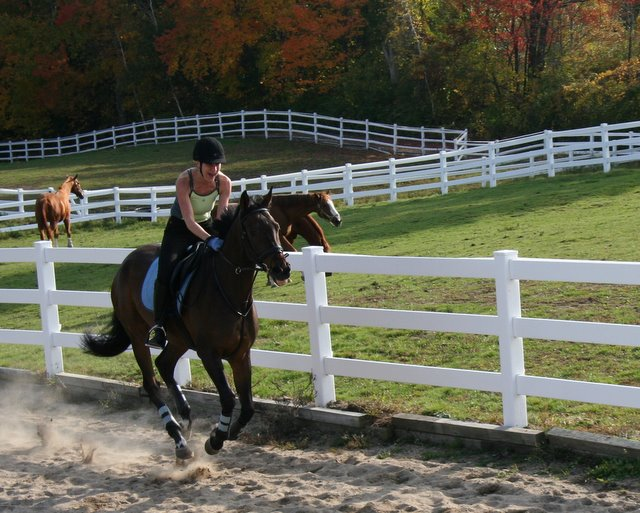 the galloping girl