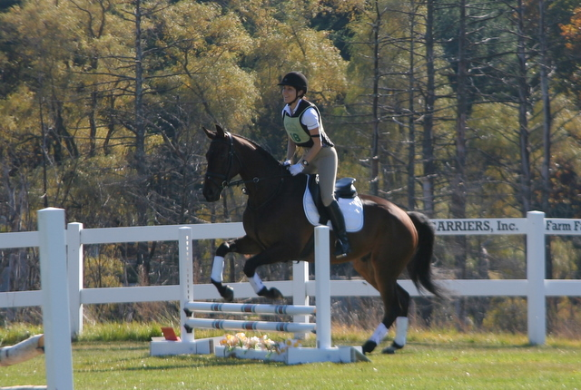 Sophie and Alibi going over one of the jumps