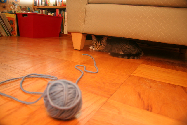 The proverbial ball of yarn
