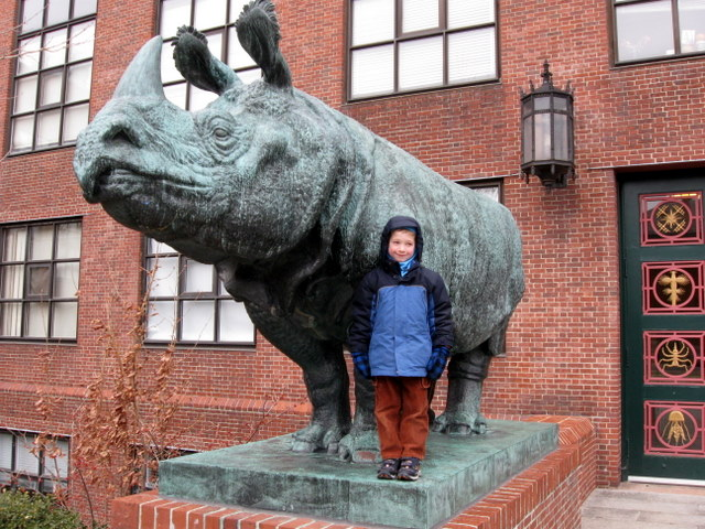 Outside the Biology building -- 1937 Katherine Lane rhino sculpture